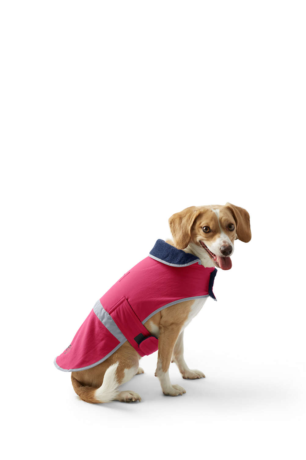 Dog Squall Jacket from Lands\' End