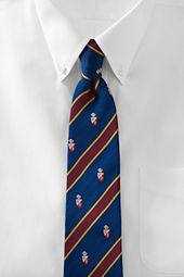 Men's Shield Stripe Necktie