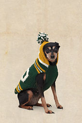 Titletown Hooded Pet Sweater