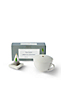 The Rejuvenation Gift Tea Set