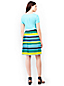 Women's Pleated Stripe Skirt