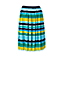 Women's Pleated Stripe Skirt