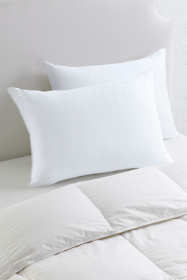 CoolMAX Pillow Set of 2