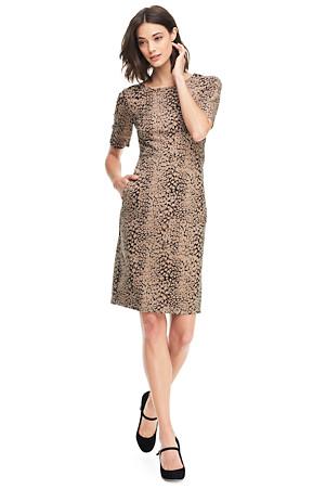 fc7218cd4e5 Women s Pattern Ponte Jersey Shift Dress