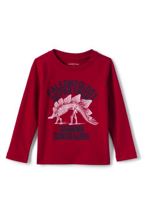 Little Boys Graphic Tee Shirt