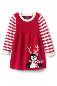 Toddler Girls Sweater Dress