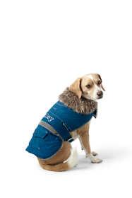Dog Expedition Jacket