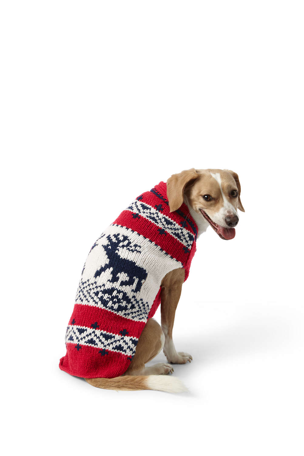dog knit reindeer christmas sweater from lands end