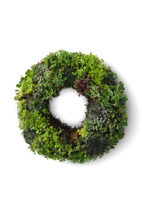 Fresh Succulent Wreath 14