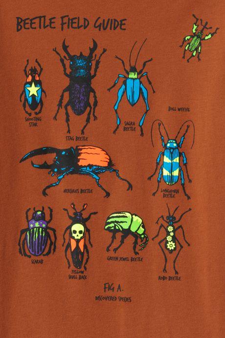 Boys Graphic T Shirt
