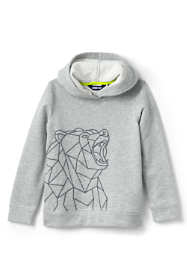 Toddler Boys Graphic Pullover Hoodie Sweatshirt
