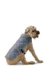 Dog Squall Jacket - Printed