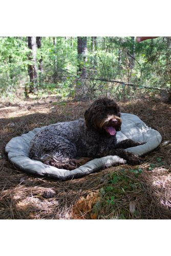 Carolina Pet Company Portable Dog Sleeping Bag