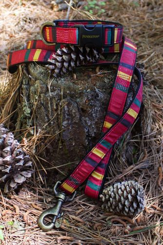 Carolina Pet Company Pendleton National Park Pet Collar