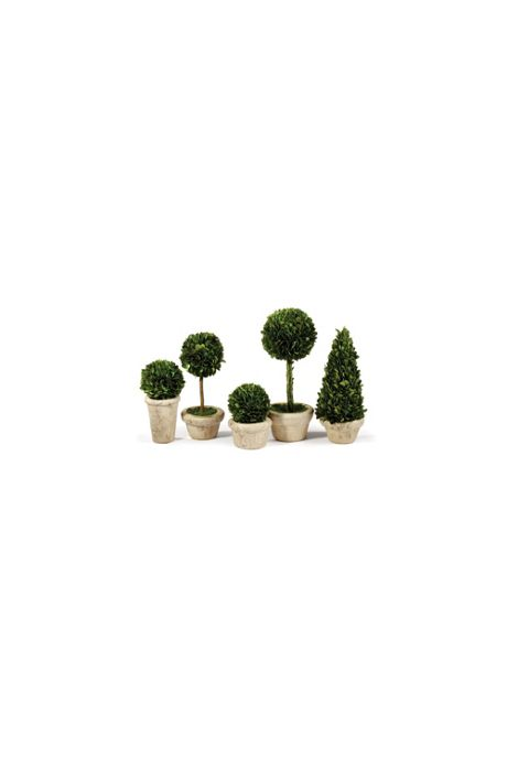 Napa Home and Garden Artificial Boxwood Potted Topiaries Set Of 5