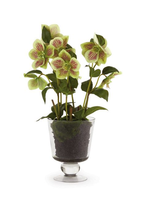 Napa Home and Garden 16 inch Artificial Hellebores Arrangement In Urn
