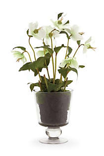 Napa Home and Garden 16 inch Artificial Hellebores Arrangement In Urn, Front