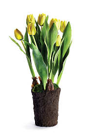 Napa Home and Garden 22 inch Artificial Tulip Drop In Plant
