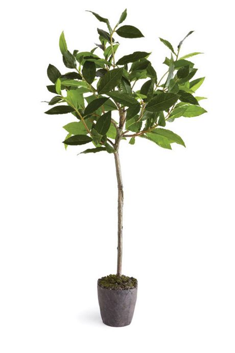 Napa Home and Garden 28.5 inch Artificial Bayleaf Tree Drop In Plant