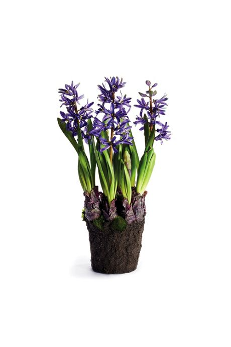 Napa Home and Garden 16.5 inch Artificial Hyacinth Drop In Plant