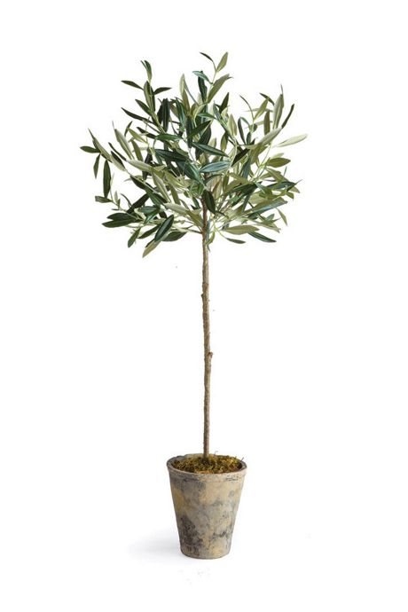 Napa Home and Garden 30 inch Artificial Potted Olive Tree