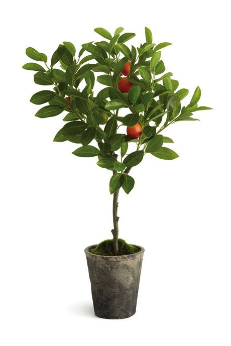 Napa Home and Garden 28 inch Artificial Orange Potted Topiary Tree