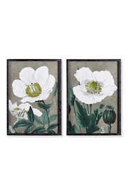 Napa Home and Garden Poppy Prints Set Of 2