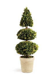 Napa Home and Garden Artificial Boxwood Triple Layer Potted Topiary