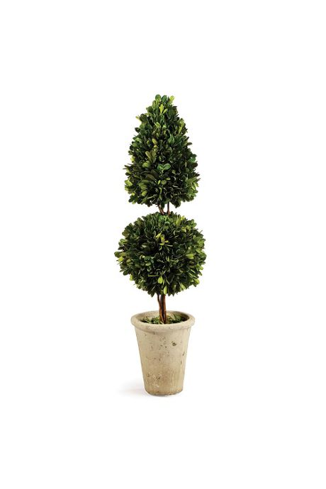 Napa Home and Garden 25 inch Artificial Boxwood Two Layer Potted Topiary