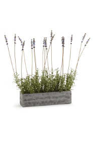 Napa Home and Garden 19 Inch Artificial Lavender Plant in Trough
