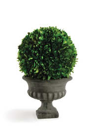 Napa Home and Garden 10 inch Artificial Boxwood Ball In Potted Topiary