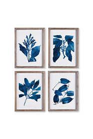Napa Home and Garden Indigo Botanical Prints Set Of 4