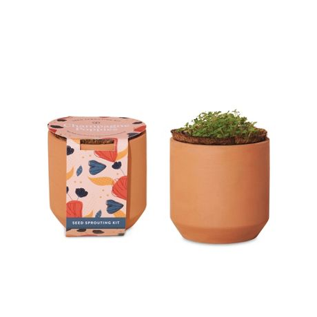Modern Sprout Custom Logo Tiny Terracotta Grow Kit Champagne Poppies